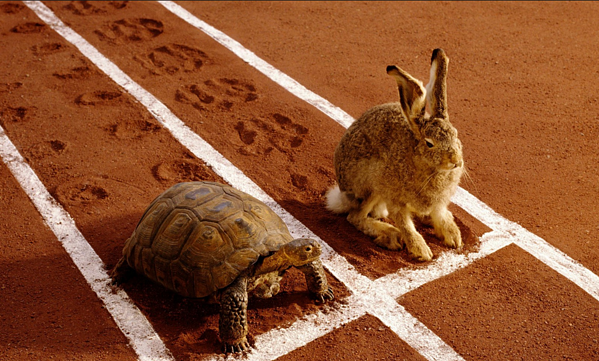 The tortoise beat the hare because he was deliberate